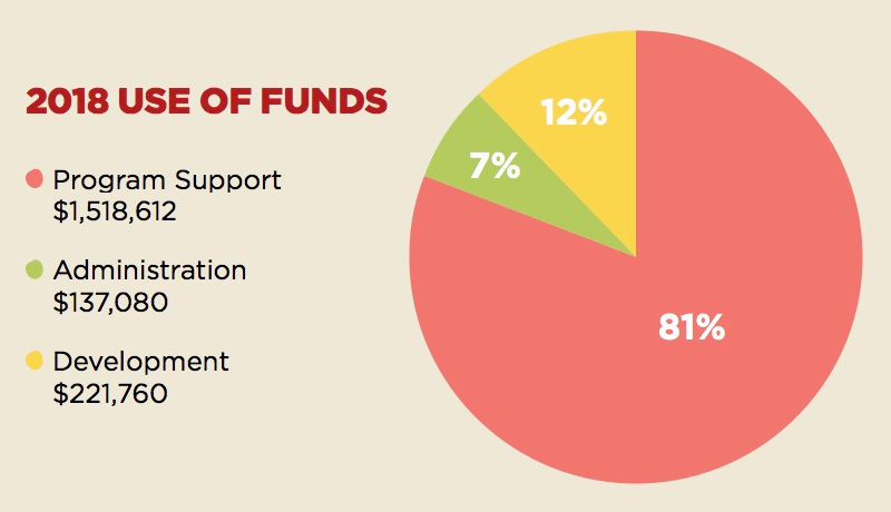 A screenshot of a pie chart showing information about AFEDJ's Use of Funds in 2018.