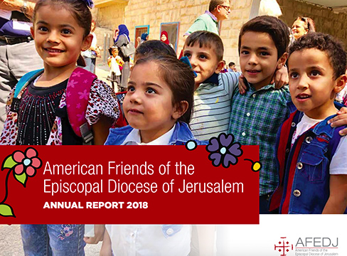A screenshot of the AFEDJ 2018 Annual Report